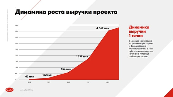 Prezentacija-seti-dlja-privlechenija-investicij-dinamika-rosta-vyruchki-proekta