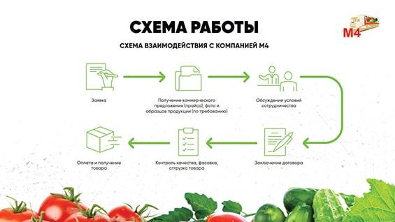 prezentaciya-dlya-postavshhika-produktov-shema-raboty-s-kompaniej