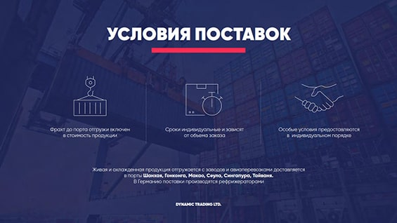 razrabotka-prezentacii-dlya-distrib-uslovija-postavok