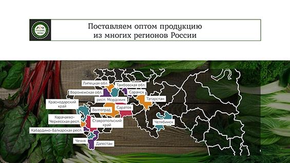 prezentaciya-dlya-postavshhika-produktov-optom-mnogie-regiony-rossii