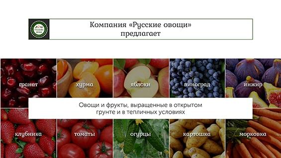prezentaciya-dlya-postavshhika-produktov-kompanija-predlagaet-frukty-ovoshhi