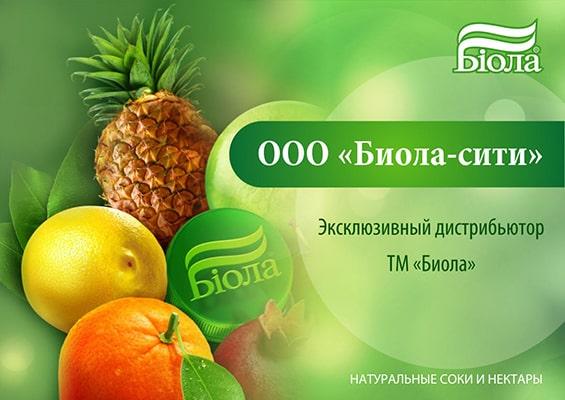 prezentacija-distrib'juterskoj-kompanii-jekskljuzivnyj-distribjutor