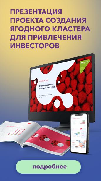 Презентация проекта создания ягодного кластера для привлечения инвесторов