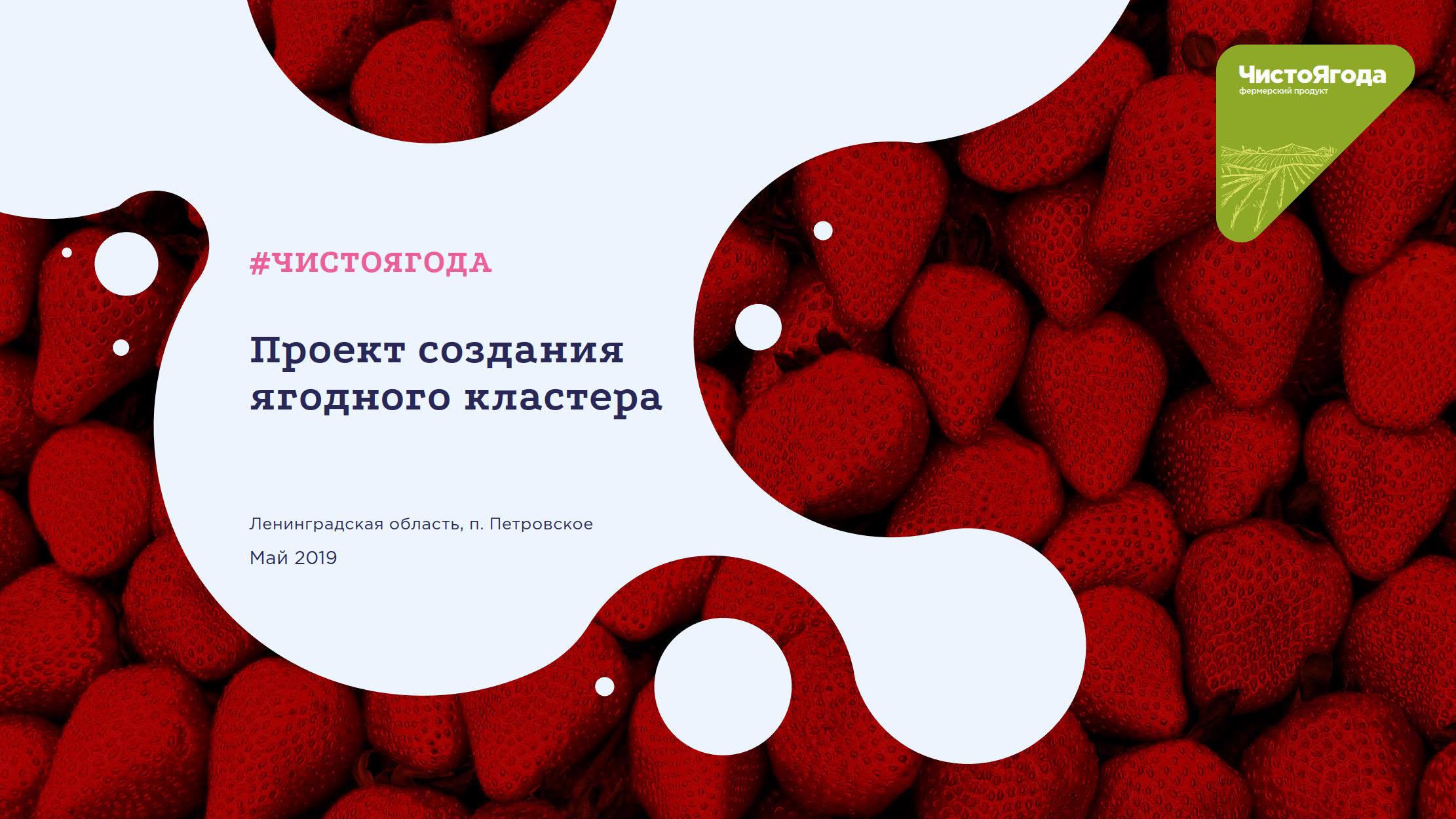Презентация проекта создания ягодного кластера #ЧИСТОЯГОДА
