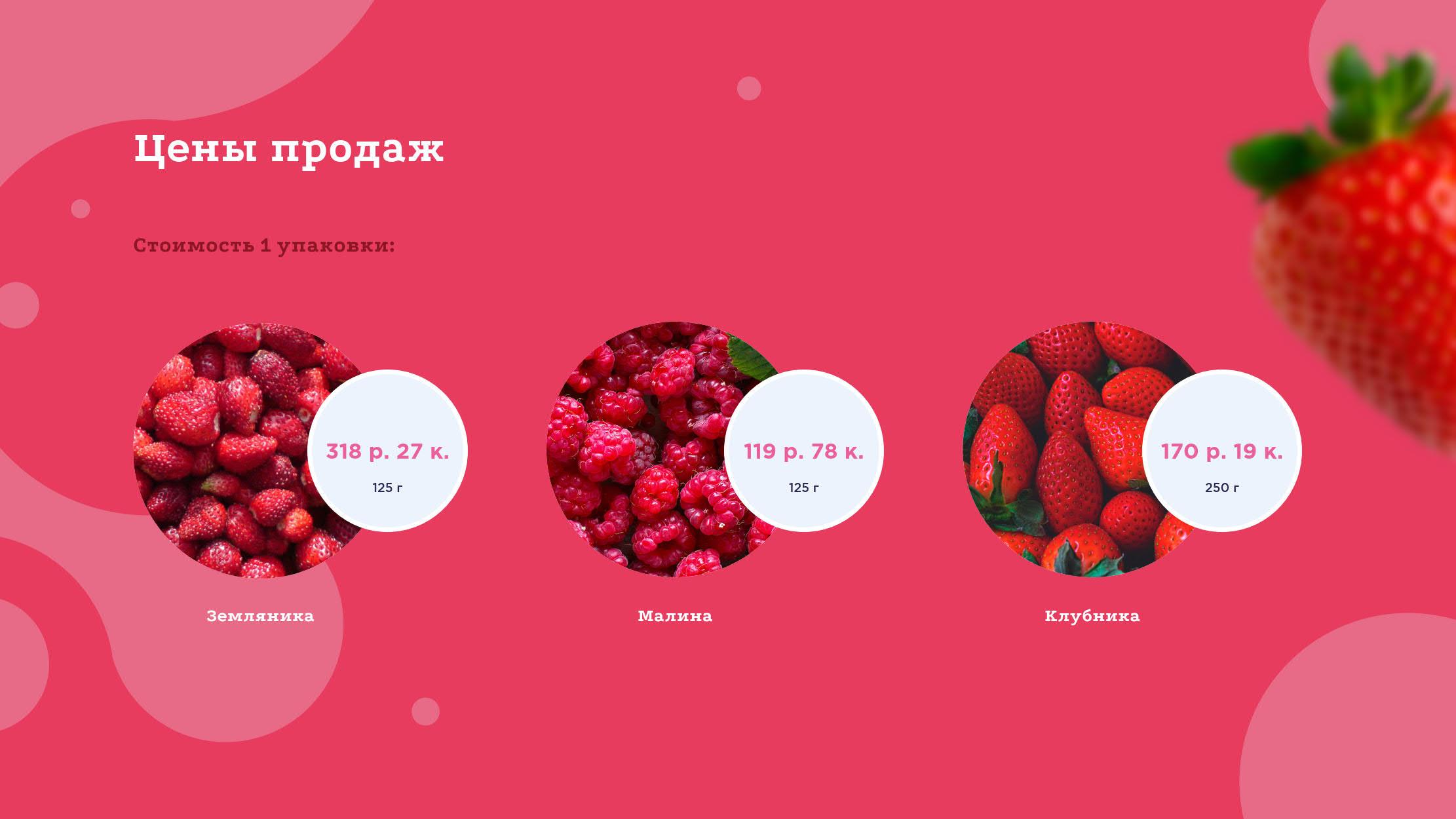 Презентация проекта создания ягодного кластера для привлечения инвестиций