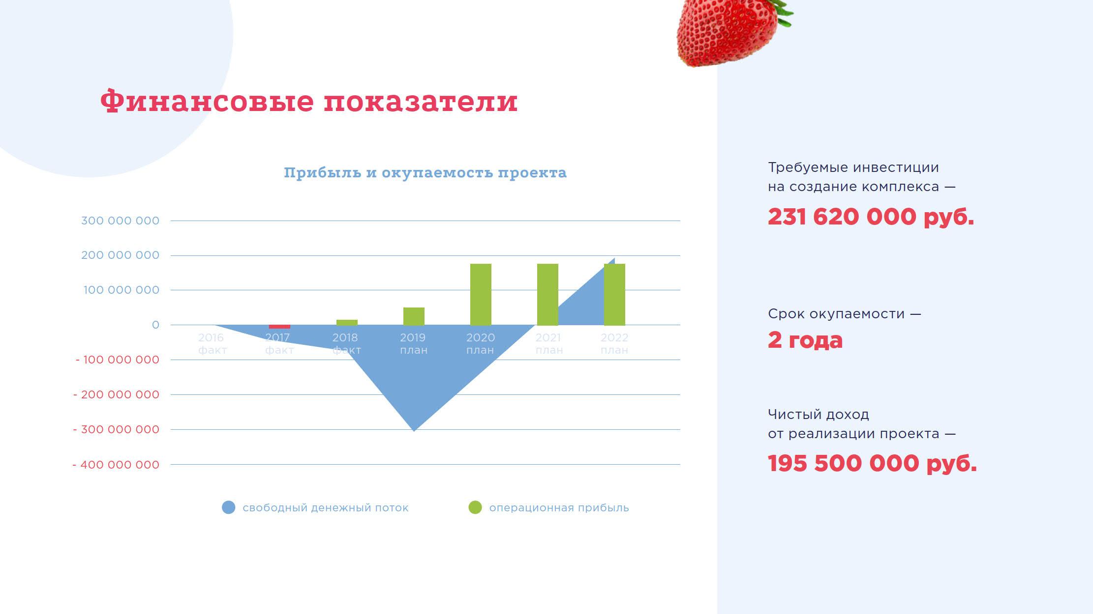 Презентация проекта создания ягодного кластера для спонсоров